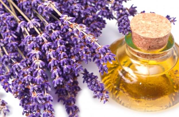 Lavandino ulje - upotreba za kosu, lice, zdravlje i cena