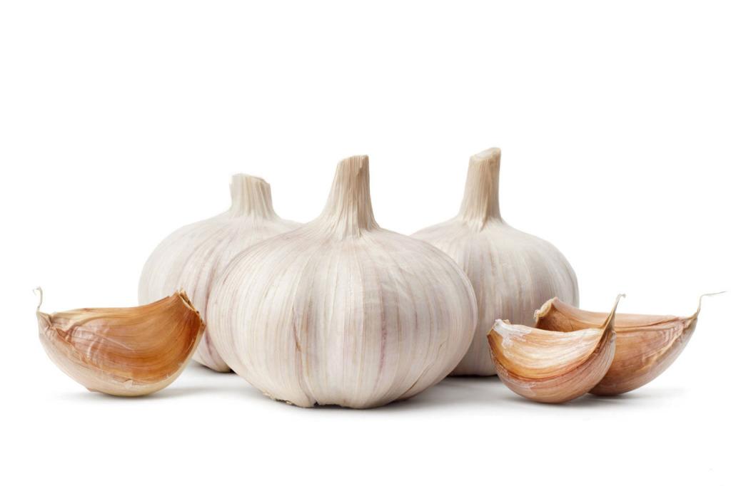 beli luk za holesterol i trigliceride