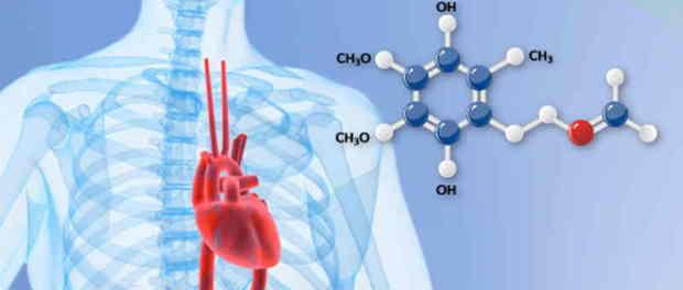Koenzim Q10 za srce