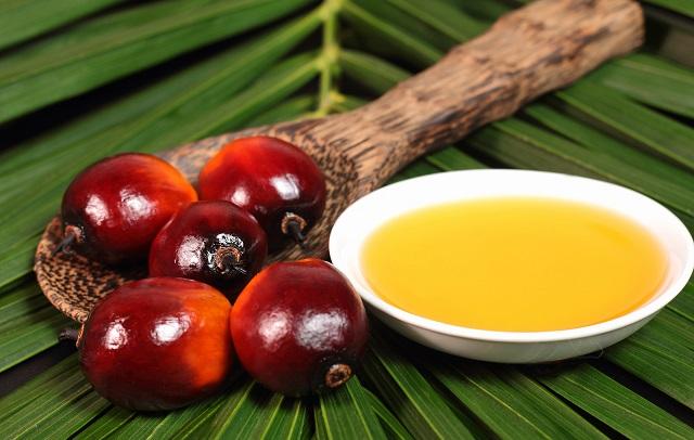 Palmino ulje - u ishrani, za kosu, zdravlje i cena