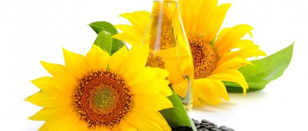 da li je suncokretovo ulje zdravo u ishrani