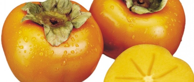 lekovitost i uzgoj japanske kaki jabuke