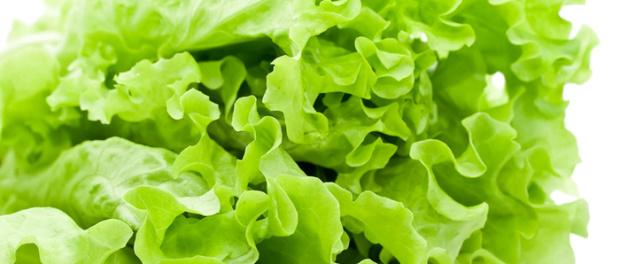 zdravstvene prednosti zelene salate