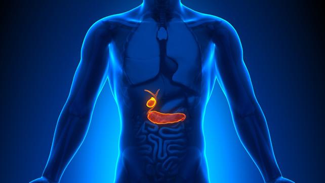 Presavijena žučna kesa - simptomi, ishrana i lečenje