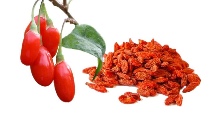 Godži bobice - upotreba, lekovita svojstva i recepti
