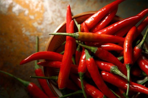 Ljuta paprika – lekovitost i recepti