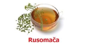 Rusomača - lekovitost, tinktura i čaj